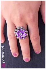 225_ring-purplekit1june-box03