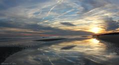 Nature's Brush Strokes (Shannon Rose O'Shea) Tags: ocean sunset sky beach nature clouds reflections southcarolina atlanticocean waterreflections hiltonheadisland colignybeach canoneosrebelt2i shannonroseoshea