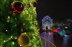 s Dec22 GBTB_DSC_6052 (Andrew JK Tan) Tags: christmas festive lights singapore umbrellas 2014 gardensbythebay