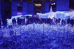ocean of lights (hauko) Tags: christmas winter lights tokyo illumination canoneoskissx2