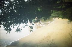 YASHICA MF-3 - KODAK Pro Image 100 - 026 (gabsauro) Tags: color film beach analog kodak photograph pelicula filme 135 vacations analogic colorido proimage100 analogico yashicamf3