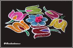 4826 - Margazhi Kolam (chandrasekaran a 38 lakhs views Thanks to all) Tags: kolam culture custom traditions india festivals pongal religion art designs travel tamils margazhimonth canon60d tamron18270mm kodikkarai rangoli