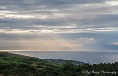 IMG_1305 (IanAngus1) Tags: landscape ayrshire