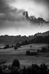 Ex Libris (Carlos Dias | photography) Tags: bw mountain mountains nature vertical fog clouds landscape nationalpark spain peak asturias poo picu picosdeeuropa matinal cabrales urriellu naranjodebulnes