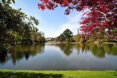 Sheffield Park Garden (SPIngram) Tags: park trees red house lake beautiful gardens river landscape sussex scenery pretty colours sheffield national trust shrubs refelction