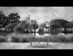 Peace and Quiet in the Heart of the City (B.M.K. Photography) Tags: skyscrapper city trees plants water lake bench quiet fineart textured australia