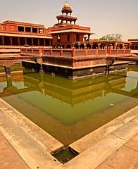 Fatehpur Sikri Palace 123 (David OMalley) Tags: india muslim islam agra palace mosque pilgrimage akbar masjid allah islamic pradesh fatehpur sikri muhammed uttar jama darwaza buland sikari vijaypur