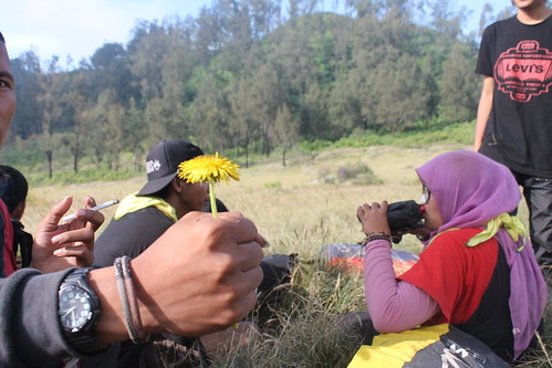 "Pendakian Sakuntala Gunung Argopuro Juni 2014 • <a style=""font-size:0.8em;"" href=""http://www.flickr.com/photos/24767572@N00/27066579572/"" target=""_blank"">View on Flickr</a>"