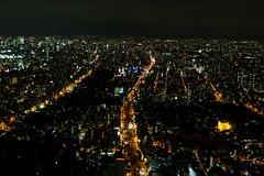 Osaka (GavinZ) Tags: asia japan osaka night city cityscape lowlight street lights