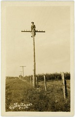 Man on Pole (Alan Mays) Tags: ephemera postcards realphotopostcards rppc photos photographs foundphotos portraits men clothes clothing hats telephonepoles utilitypoles poles wires lines insulators farms fields fences heights danger dangerous precarious perspective vanishingpoint vanishingpoints distant distance receding strange unusual antique old vintage switzer awswitzer awswitzersphoto photographers studios vptp