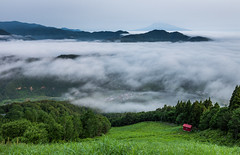 1145 (Keiichi T) Tags:  seaofclouds tree  cloud eos 6d blue green  mountain fog  shadow  canon        morning japan forest hill light sky