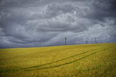 From Bohemian and Moravian Fields I. (Petr Horak) Tags: sky clouds landscape photography cloudy outdoor overcast czechia cze jihomoravskkraj brankovice jihomoravskkraj