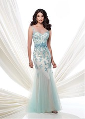 Elegant Dot Tulle Bateau Neckline Mermaid Sexy Prom Dress with Beaded Lace Appliques (miyadresses2016) Tags: elegantdress mermaiddress sexypromdress lacedress longpromdress longformaldress prettydress stunningdress floraldress tunicdress