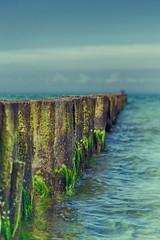 Wellenbrecher Warnemnde (Gebian) Tags: strand 50mm warnemnde nikon meer sommer ostsee rostock kste d3100