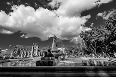 DSC01295 (Damir Govorcin Photography) Tags: water fountain st marys cathedral hyde park sydney zeiss 1635mm sony a7ii