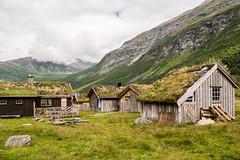 Herdalssetra Alm - Norwegen (Sabine Kierstead) Tags: norwegen landschaft alm outdoor herdalssetra ziegenalm berge geirangerfjord