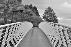 Proportion (muckley2014) Tags: bridge liverpool nikon footbridge bridges runcorn merseyside widnes halevillage southliverpool pickeringspastures pickeringspasturesfootbridge