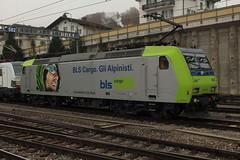 BLS Lötschbergbahn Lokomotive Re 485 003 - 8 und Siemens Vectron Lokomotive Baureihe 193 901 - 6 am Bahnhof Spiez im Berner Oberland im Kanton Bern in der Schweiz (chrchr_75) Tags: chriguhurnibluemailch christoph hurni schweiz suisse switzerland svizzera suissa swiss chrchr chrchr75 chrigu chriguhurni 1411 november 2014 albumbahnenderschweiz schweizer bahnen eisenbahn bahn train treno zug november2014 albumblslötschbergbahn bls lötschbergbahn albumbahnenderschweiz2014712 albumblscargolokomotivere485re486 cargo lokomotive blscargo juna zoug trainen tog tren поезд паровоз locomotora lok lokomotiv locomotief locomotiva locomotive railway rautatie chemin de fer ferrovia 鉄道 spoorweg железнодорожный centralstation ferroviaria elektrolokomotive triebfahrzeug albumbahnblssiemensvectron siemens vectron albumbahnhofspiez bahnhof spiez kantonbern berner oberland