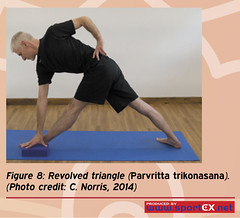 43DY23_3 (sportEX journals) Tags: yoga rehabilitation massagetherapy sportex sportsinjury sportsmassage sportstherapy sportexdynamics strengtheningexercises sportsrehabilitation