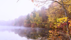 Dallenbach Lake (Dalliance with Light (Andy Farmer)) Tags: morning autumn mist color reflection fall nature water leaves fog pond nj highkey eastbrunswick dallenbachlake