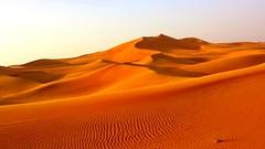 Sand dunes in the UAE desert. (abdulameeri) Tags: sahara sand dubai desert dunes dune uae safari abudhabi sharjah unitedarabemirates بر fujairah ajman ummalquwain rasalkhaimah دولة الامارات العربية صحراء طعوس سفاري البداير نقيان حدب