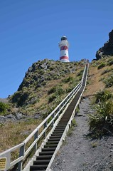 Lighthouse Cape Palliser