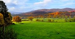 _DSC1247 (andoni.guridi) Tags: autumn fall spain otoño navarra 2014 basaburua