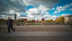 ... (Gabriel M.A.) Tags: leica blue sky paris france fall clouds automne rangefinder f45 velvia m8 cropped sénat nuages f8 manualfocus 15mm jardinduluxembourg 16x9 tourmontparnasse scalefocus voigtlanderheliar15mmf45ltm
