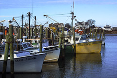 Dockside Lineup (joegeraci364) Tags: ocean sea food color art heritage beach nature water print outdoors coast boat photo fisherman dock ship image market scenic newengland crab vessel galilee atlantic rhodeisland commercial shore lobster seafood serene