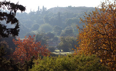 View of the Athenian Agora