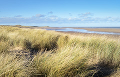 Holkham Beach, Norfolk (Steven Docwra) Tags: sea beach coast dunes norfolk sunny bluesky holkham northnorfolk
