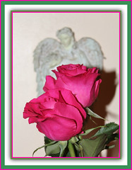 Roses & Angel Wings (bigbrowneyez) Tags: pink roses two stilllife nature beautiful beauty angel petals fantastic foto blossoms victorian ale natura dolce dos precious frame fancy belle romantic angelo lovely elegant fiori fabulous delicate myhome due delightful cornice angelwings flowes scatto bellissimo miacasa rosesangelwings
