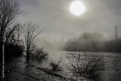 First Fog of 2016 - starting to burn off. (gregoryscottclarke photography) Tags: river spring downtown ottawa rideaucanal victoriaisland thelocks