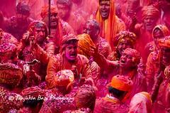Barsana Nandgaon Lathmar Holi Low res (48 of 136) (Sanjukta Basu) Tags: holi festivalofcolour india lathmarholi barsana nandgaon radhakrishna colours