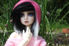 IMG_6741 (HarleyKai) Tags: msd kdf kiddelf summerhead14 kiddelfsummerhead14