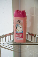hogwash shampoo (timp37) Tags: pig farm may indiana fair shampoo adventure pigs oaks 2016 hogwash