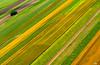 United colors of Vojvodina Serbia (AleksandarM021) Tags: novisad vojvodina vojvodjanski serbia srbija serbianculture sky aleksandarmilutinovic nature salas njiva agriculture agriculturalland agriculturaloccupation colors colorful turizam turisticka destinacija pejzaz polja njive oranice zemlja