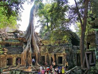 angkor - cambodge 2007 17