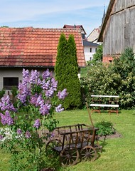 ... and a special type of bench! (:Linda:) Tags: roof church germany village thuringia spire lilac handcart brden whitebench
