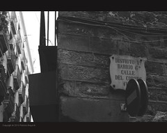 (Patricia Araya Monsalve) Tags: barcelona madrid street viaje espaa byn calle sevilla spain basilica iglesia personas ventanas granada urbano perspectiva sagradafamilia turismo giralda momentos escenas gotico palaciodecristal elretiro guadanquivir