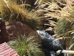 - 2016-05-12 at 14-51-06 + hot water springs
