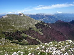 Pizzo Deta and forest (markhorrell) Tags: walking lazio apennines montiernici