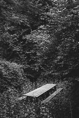 (almehag) Tags: bench sweden stockholm sverige hammarbyhjden