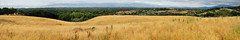 Rancho San Antonio Preserve (J-Fish) Tags: california panorama sanjose cupertino siliconvalley mountainview ranchosanantonio d300s 1685mmf3556gvr 1685mmvr ranchosanantoniopreserve