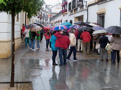 Sinfonia de paraguas en los patios (Eladio Osuna (1.5 Mg)) Tags: paraguas lluvis patioscordoba