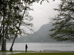 Le jongleur, l'orange, le canard et le lac de Bled (isabelle bugeaud) Tags: eau pluie lac slovnie jongleur lacdebled