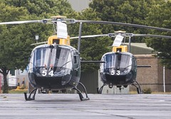 EGVP - Eurocopter AS350BB Squirrel HT2 - ZJ253 & ZJ254 (lynothehammer1978) Tags: egvp aacmiddlewallop aac armyaircorps army britisharmy middlewallop eurocopteras350bbsquirrelht2 zj253 zj254