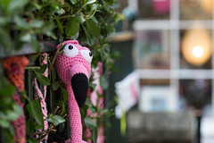 Bath Place Yarn Bombing (Pittypomm) Tags: bath place flamingo somerset croquet taunton yarnbombing