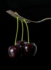 Sweet Cherries (stefanfricke) Tags: cherry kirsche gabel sony ilce6000 a6000 fav50 fork sweet
