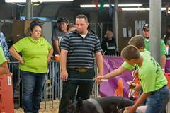 DSC_8399 (Dustin Cox Photography) Tags: colostatefair16 colorado pueblo statefair fair animals carnival 2016 fun attractions people 4h